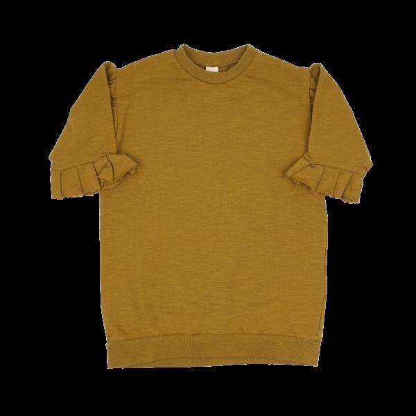 Frill-Sleeve-Dress-3-e1582896774347.png