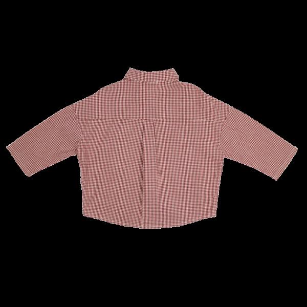 My-Check-Shirt-4-e1583249648736.png