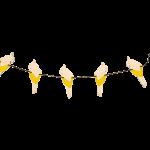 parrot-garland-yellow_1-1024×745-1.png